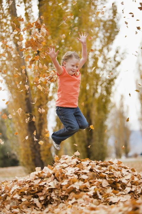 60 Best Fall Activities For Families Near Me Things To