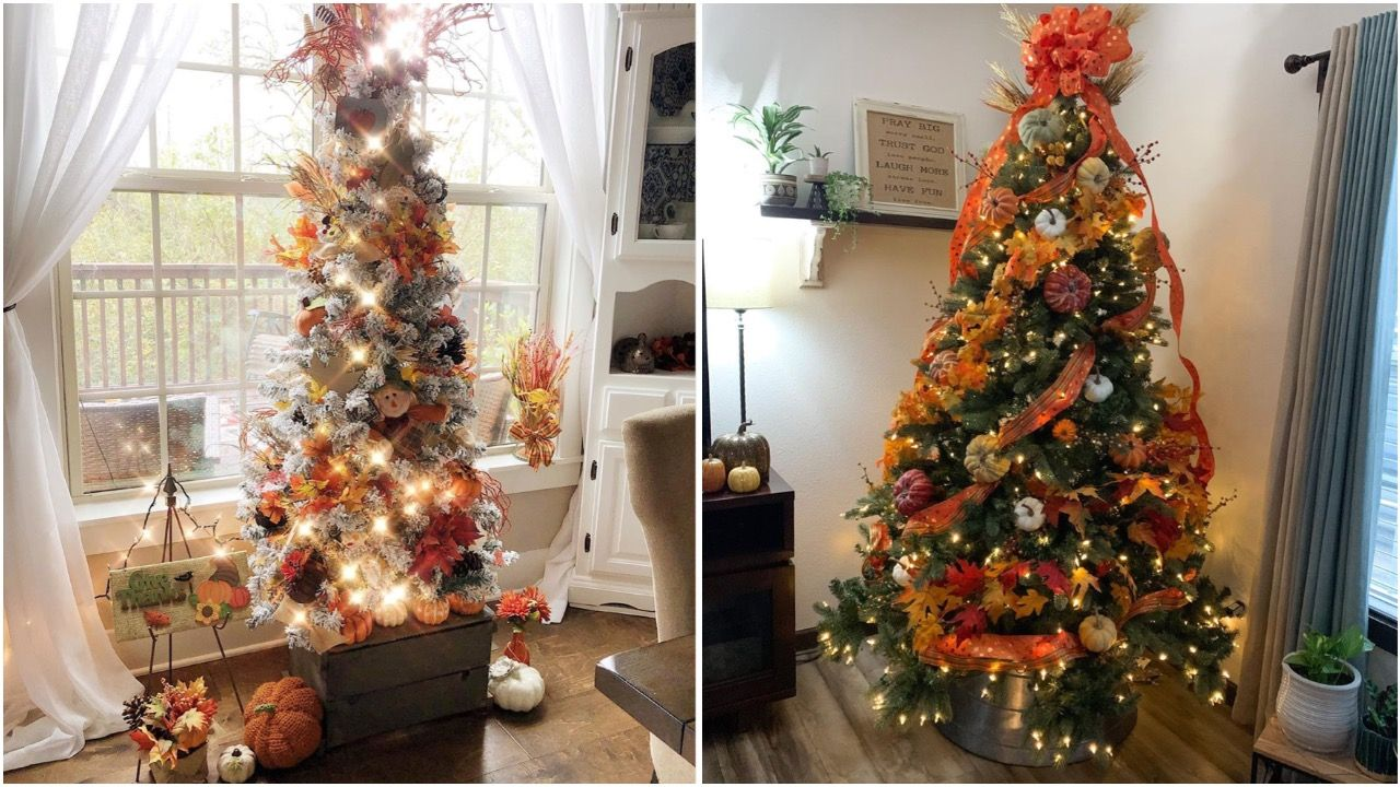 Fall Christmas Trees Will Convince You To Put Your Tree Up Early