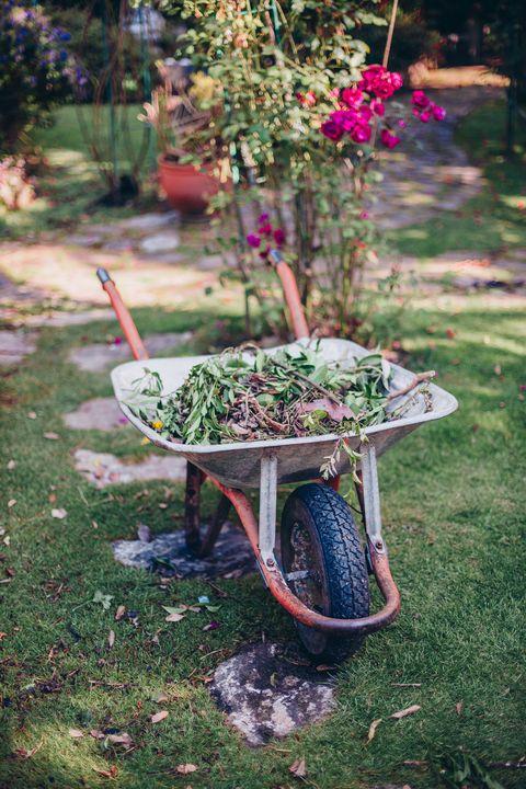 ready to plantwheelbarrow and gardener  items