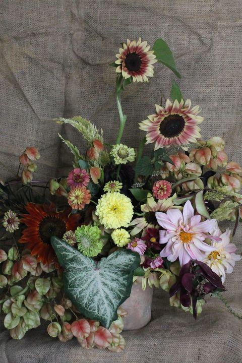 Pampas Vase Arrangement
