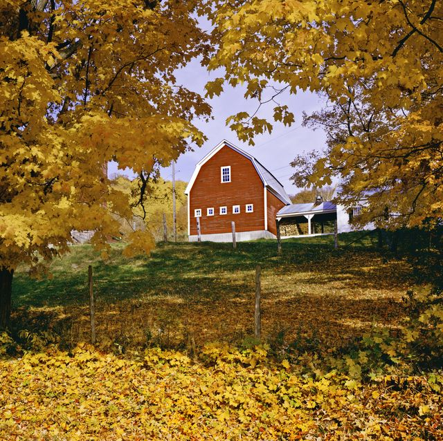 Best Sayings About Autumn