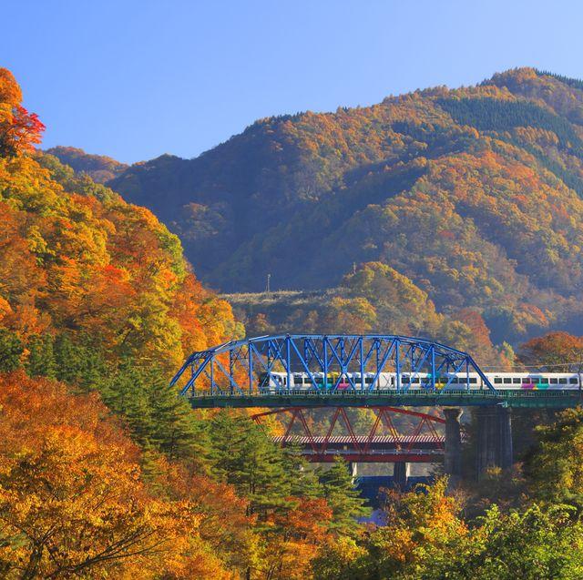10 Best Fall Foliage Train Rides