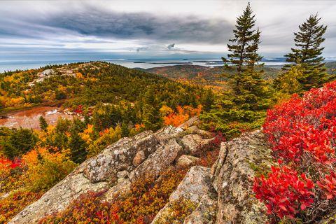 fall foliage atop cadillac mountain in acadia national park maine