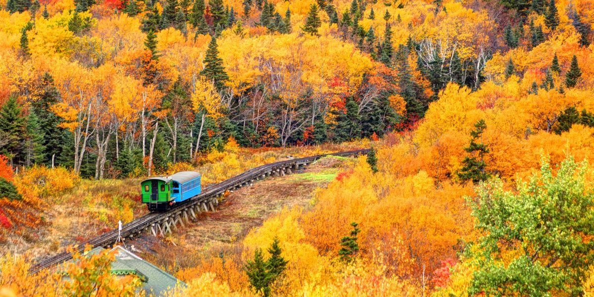 10 Fall Foliage Train Rides You Need to Add to Your Seasonal Bucket List