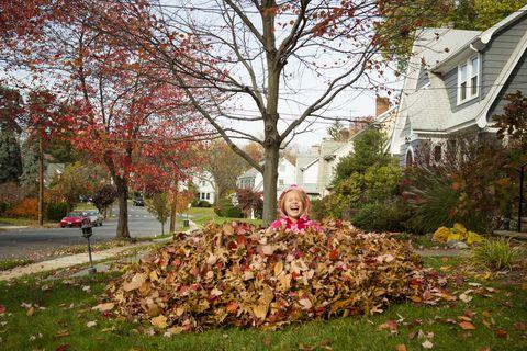 Fall Leaf Pile Fun