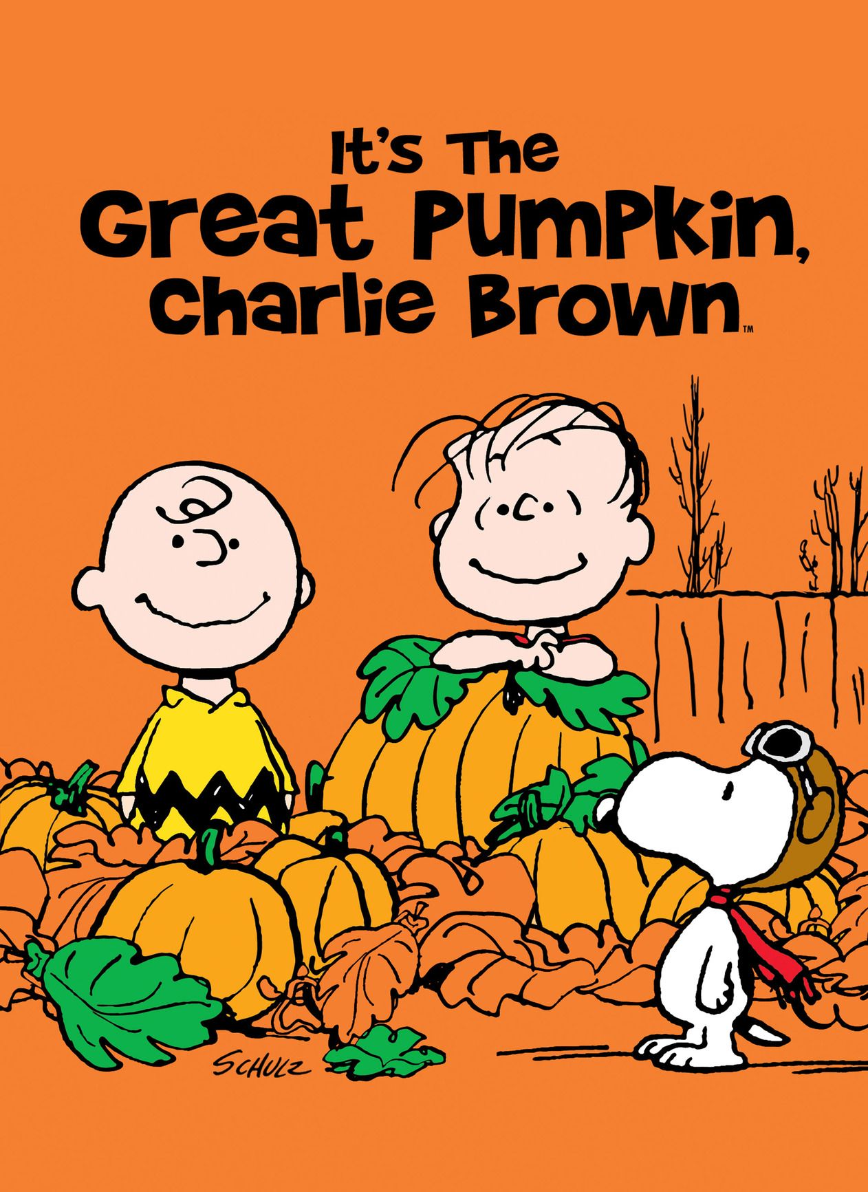 fall movies - it's the great pumpkin charlie brown