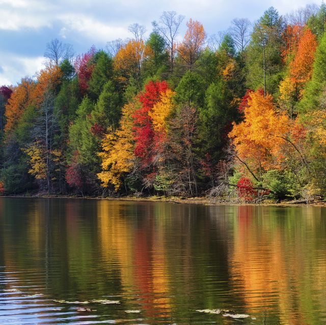 colorful fall colors reflect along the shoreline of bay mountain lake park in kingsport tennessee