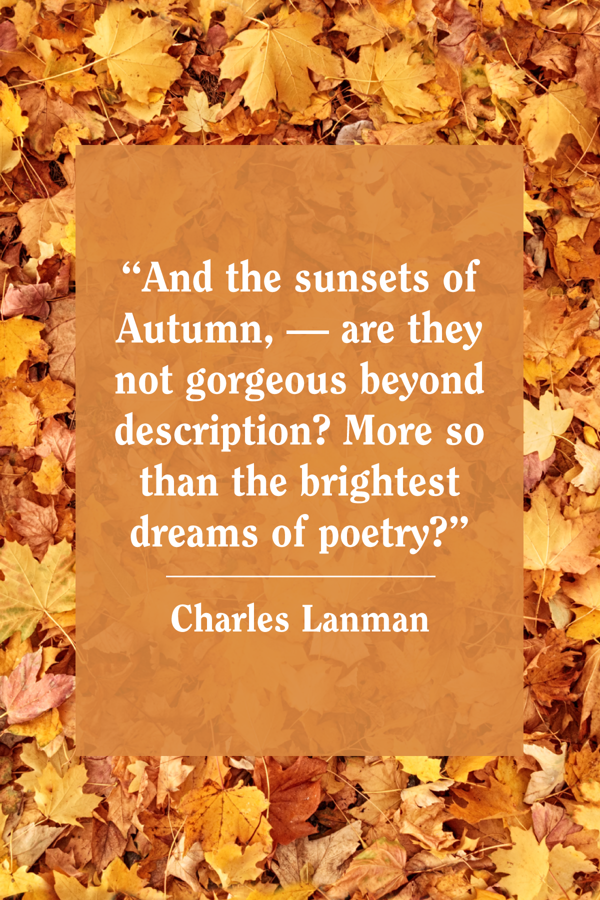 55 Best Fall Quotes 2020 Inspirational Autumn Quotes For Instagram