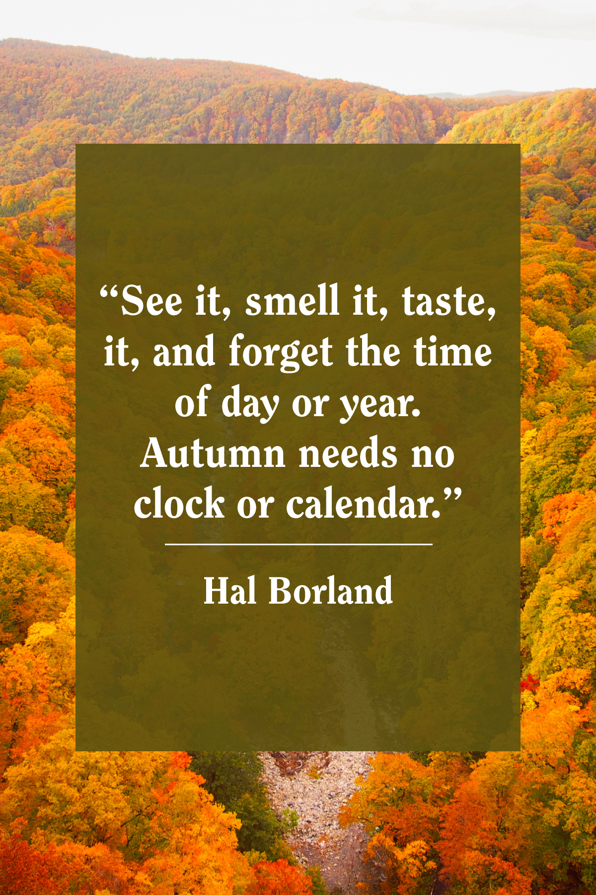 best fall quotes autumn quotes