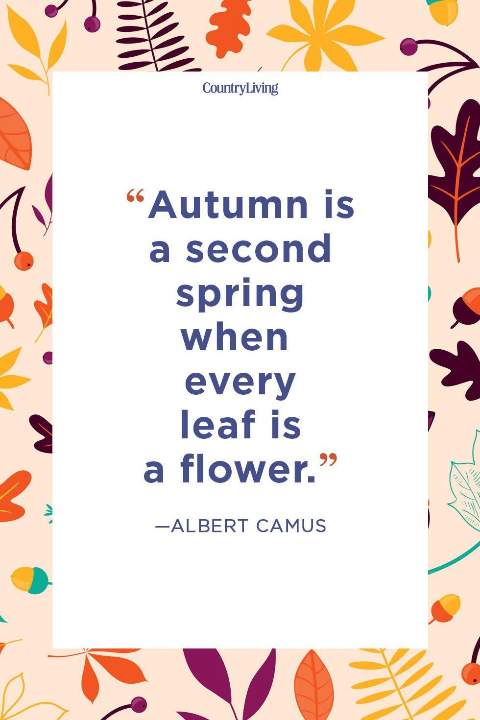 Autumn statuses for every taste 68