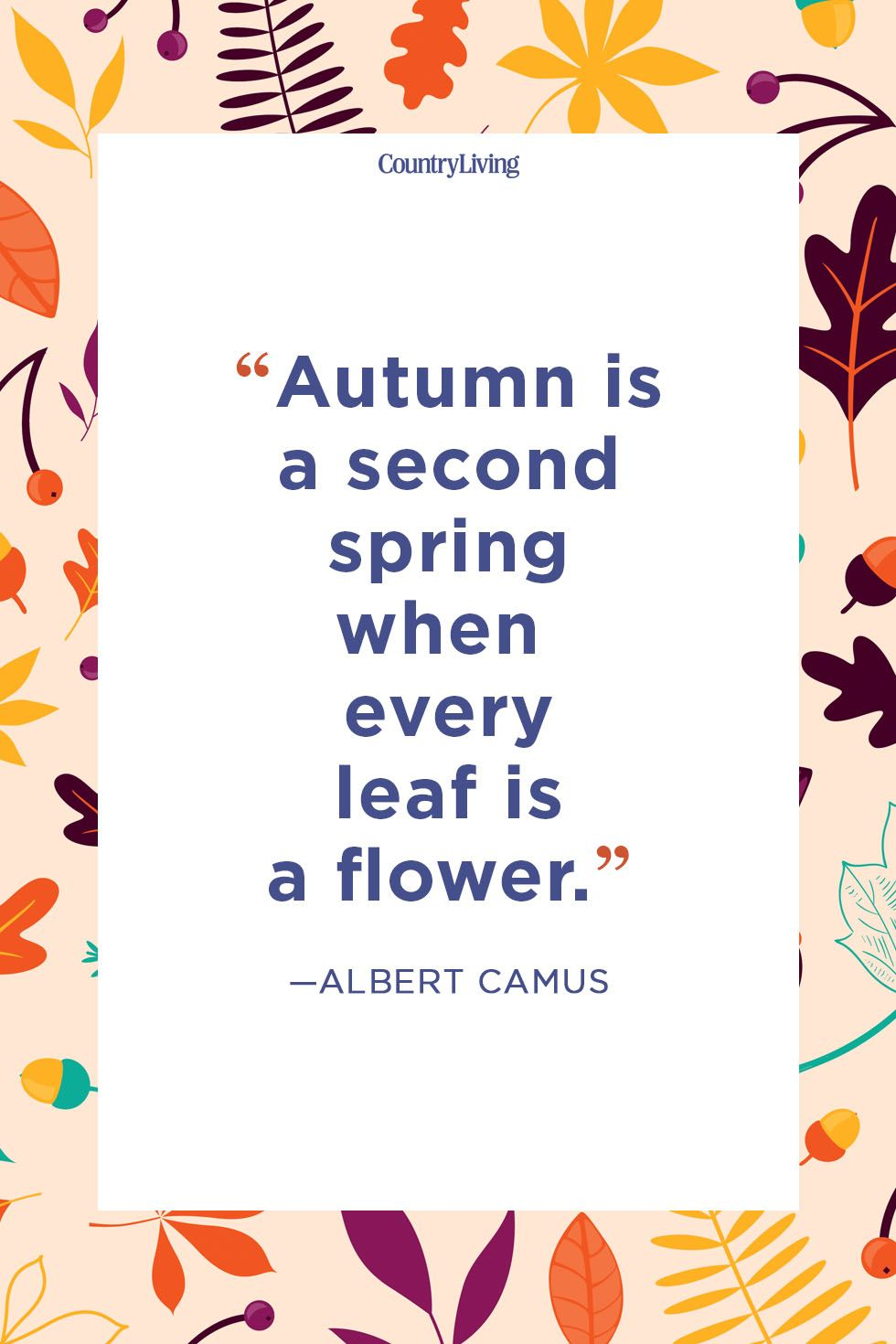 fall quotes albert camus