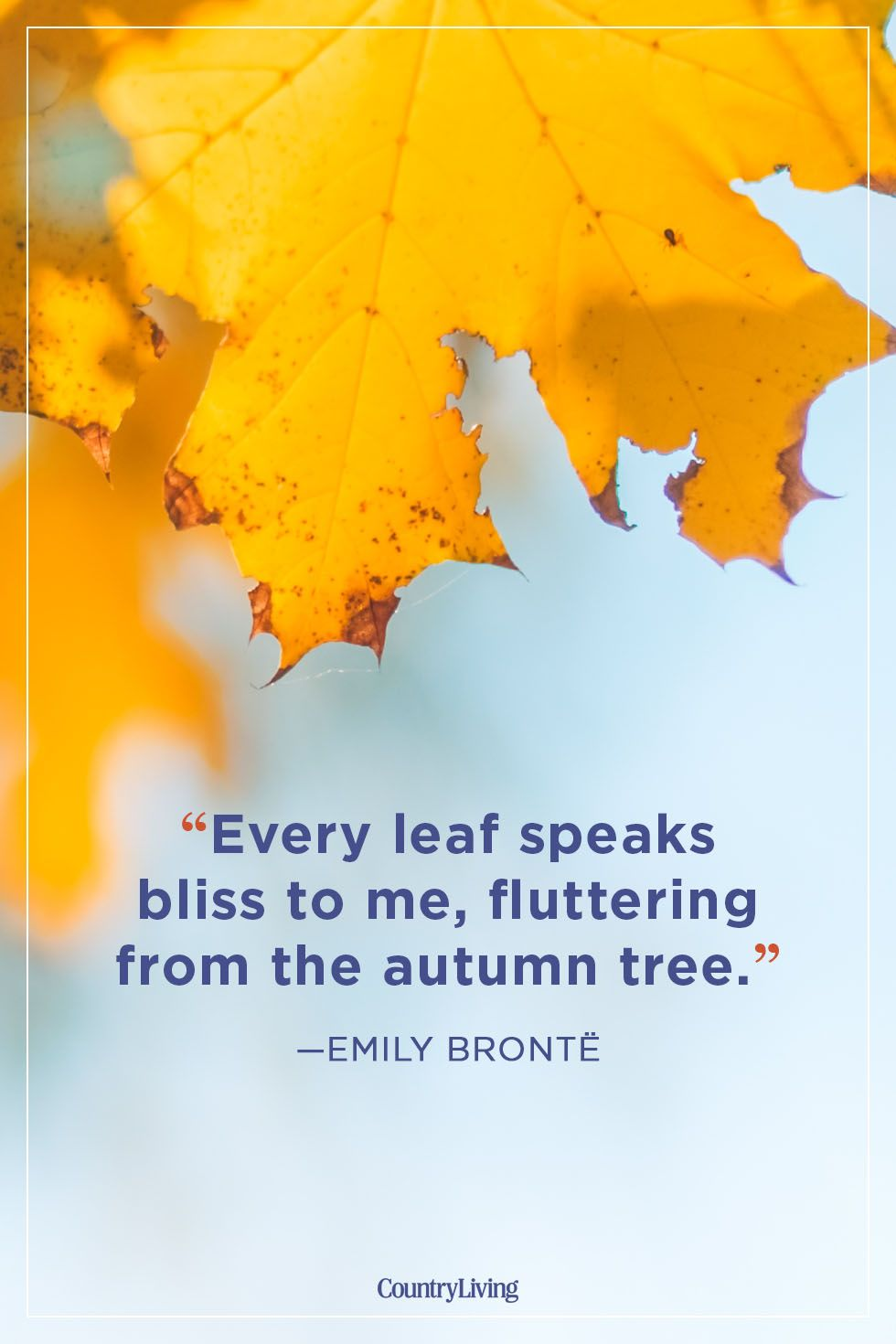 fall quotes emily brontë