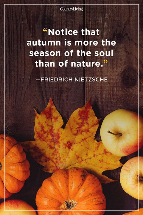 60 Fall Season Quotes Best Sayings About Autumn Inspiration Fall Quotes About Love