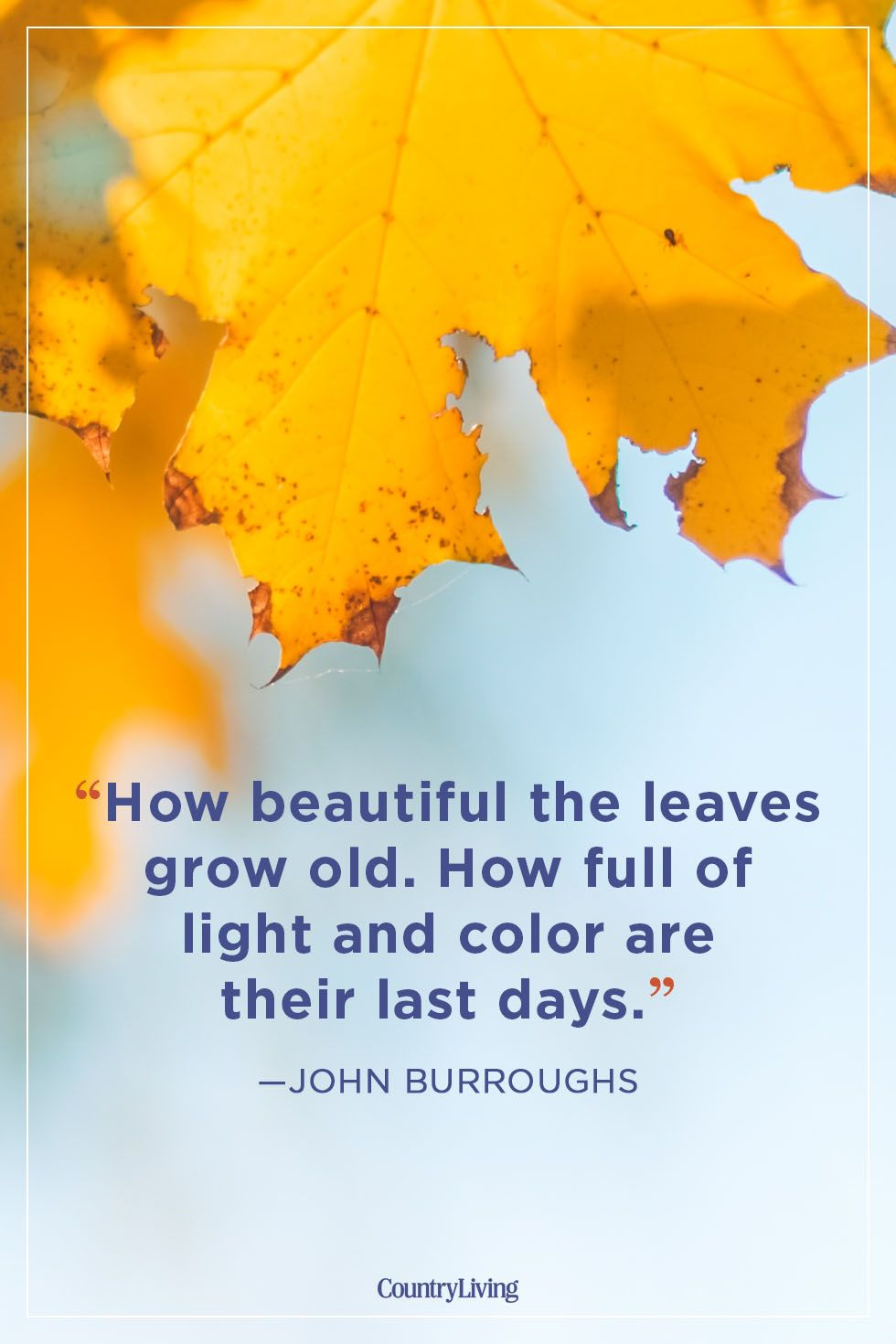 fall quotes john buroughs