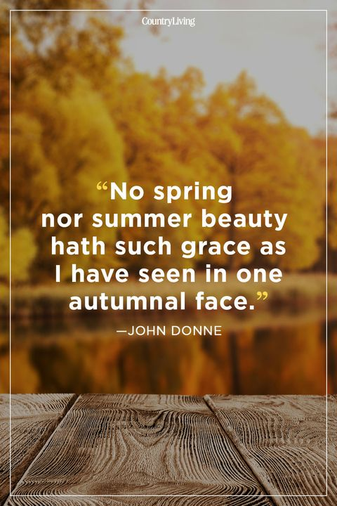 60 Fall Season Quotes Best Sayings About Autumn Mesmerizing Quotes About Loving Books