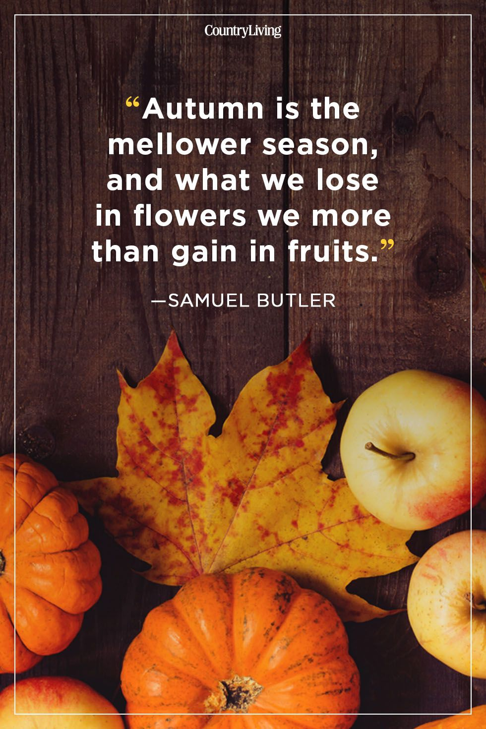fall quotes samuel butler