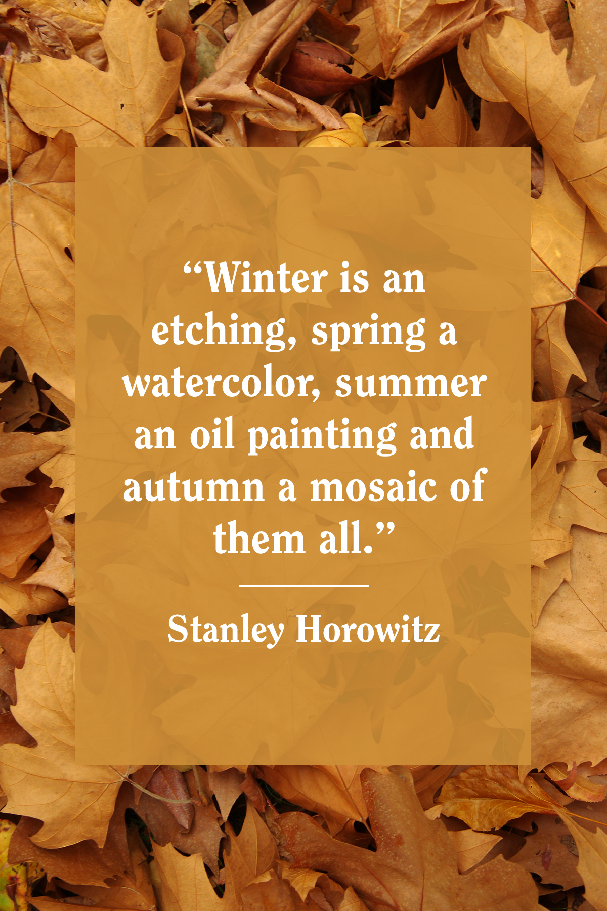 40 Best Fall Quotes 2019 Autumn Quotes