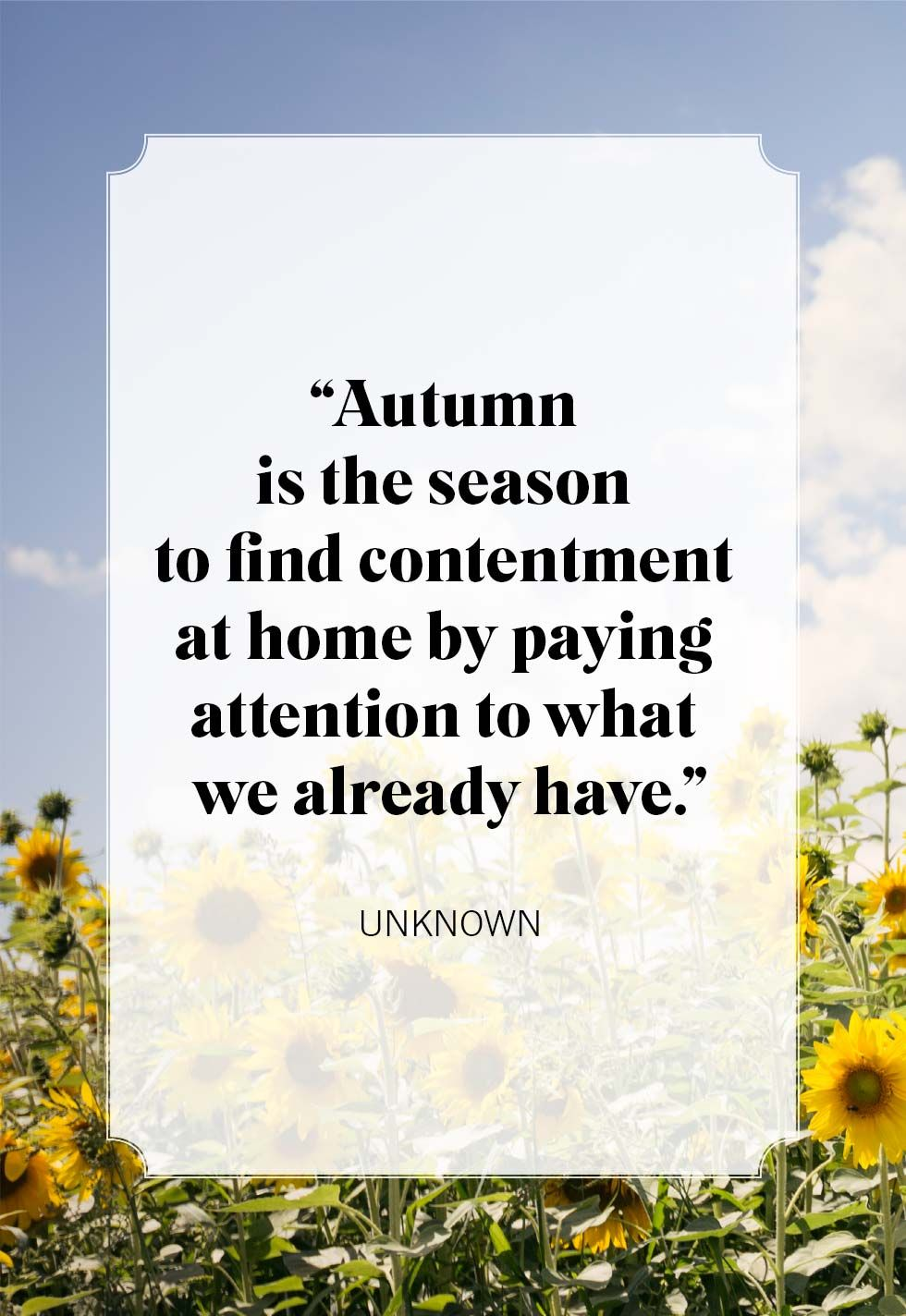 25 Best Fall Quotes Inspiring Sayings About Autumn