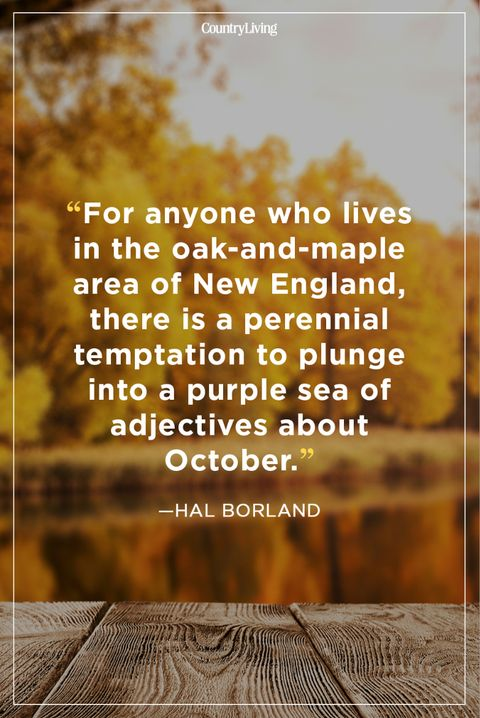 fall quotes hal borland