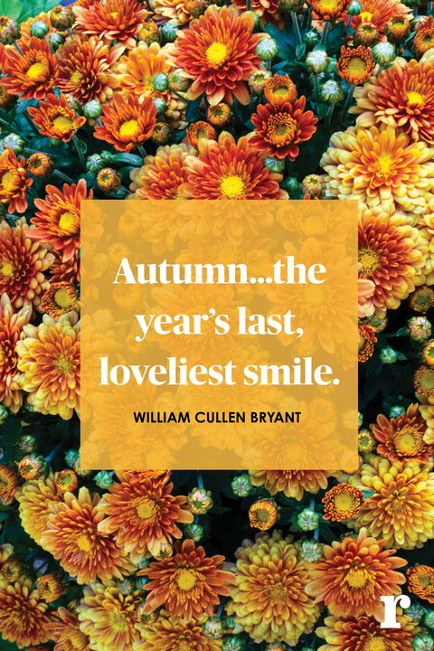 16 Fall Quotes Quotes About Fall