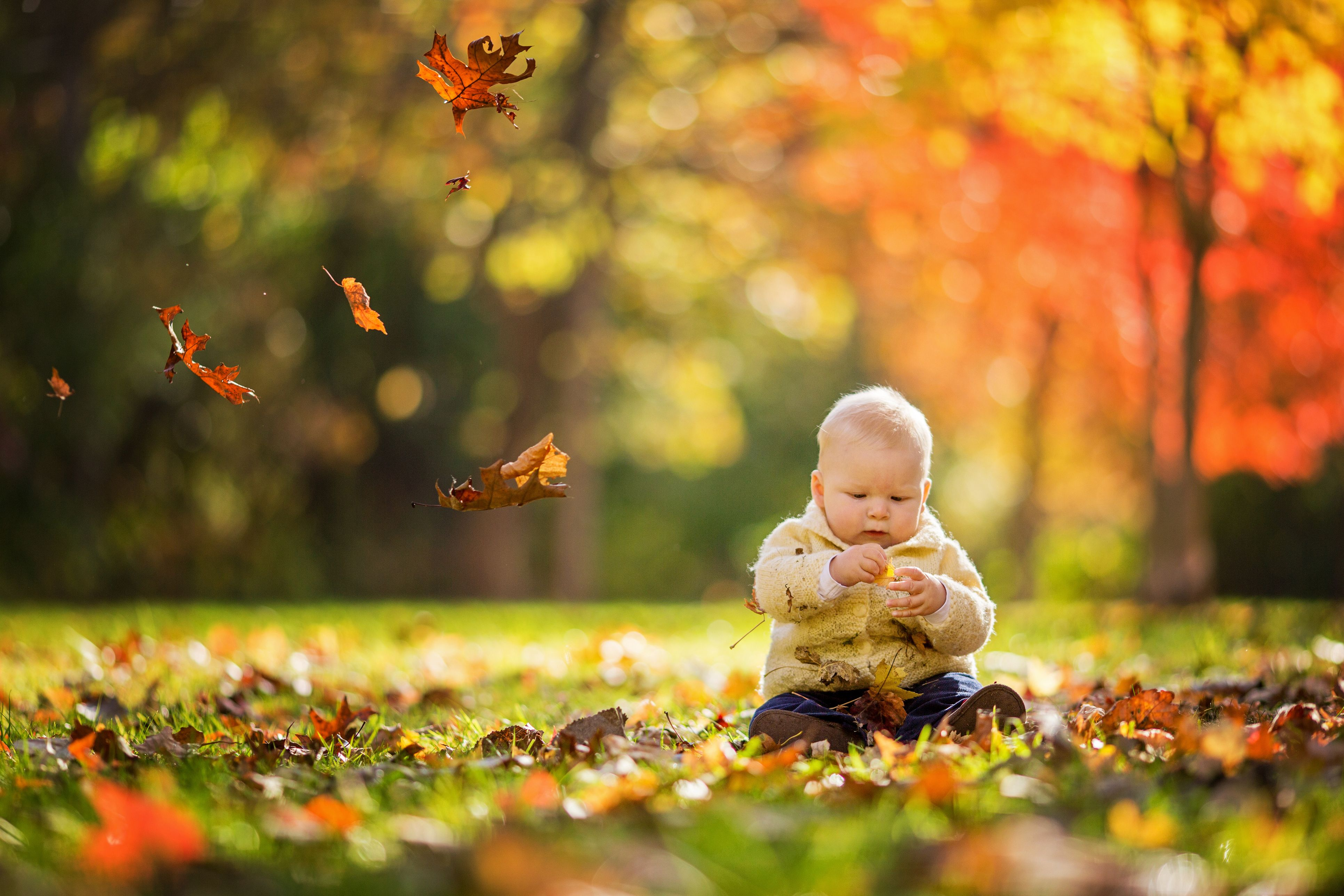 November Baby Facts - Facts About November Babies