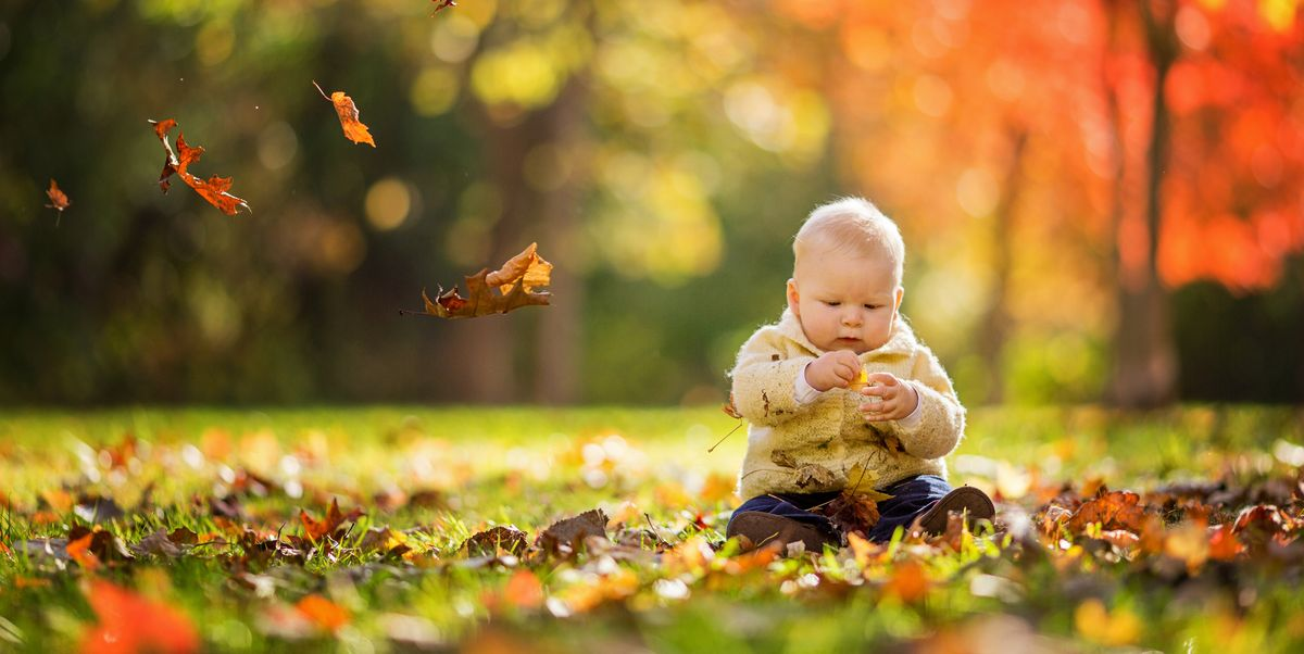 November Baby Facts Facts About November Babies
