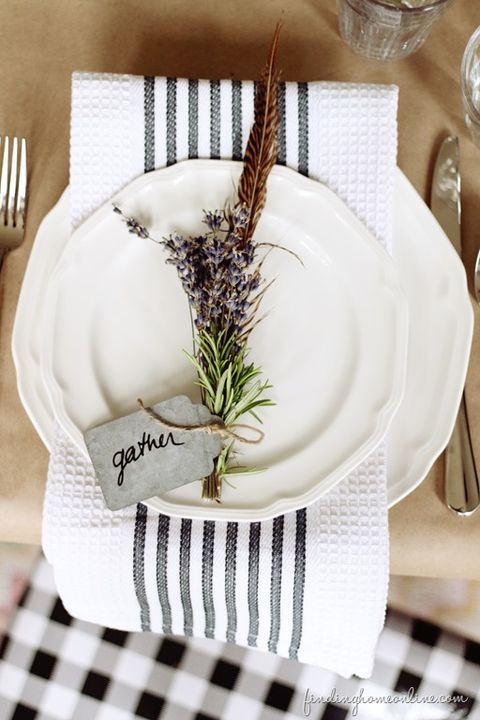 White, Table, Plant, Tableware, Vascular plant, Flower,