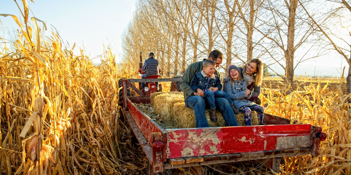 The Ultimate Fall Bucket List for the Whole Family