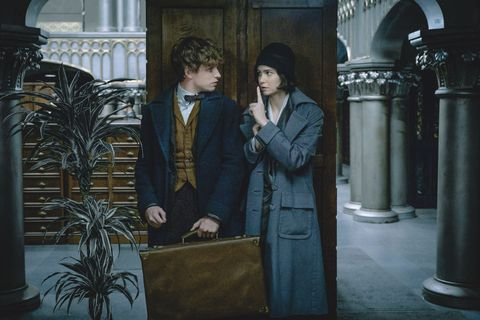 everything you need to know about fantastic beasts and where to find