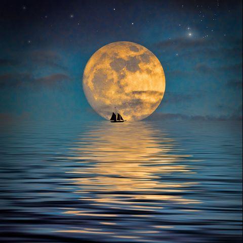 Fantastic Moonlight