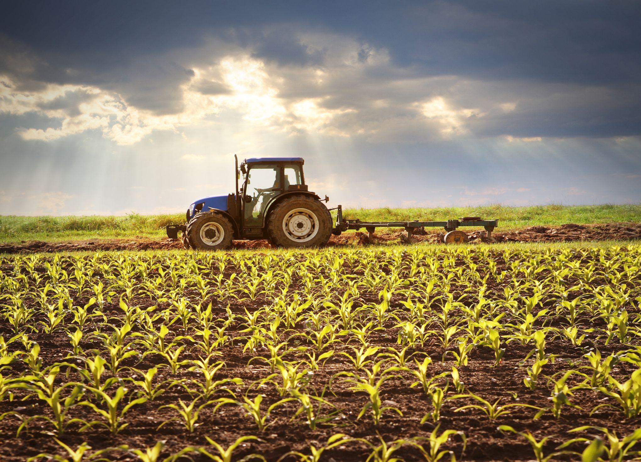 20 Best Farm Quotes Farm Quotes For Instagram