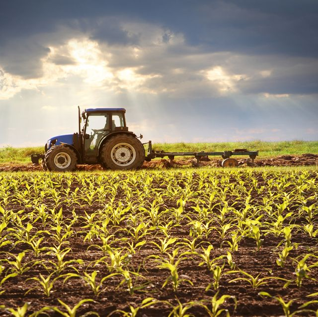 Image result for farm images