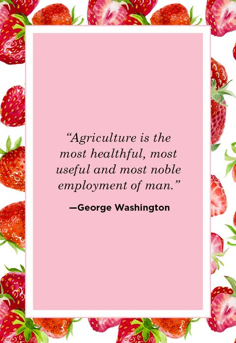 Farm Quotes George Washington