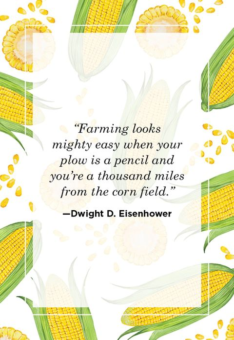 Farm Quotes Dwight D. Eisenhower