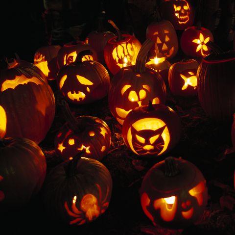 fascinating halloween facts jack o lantern display