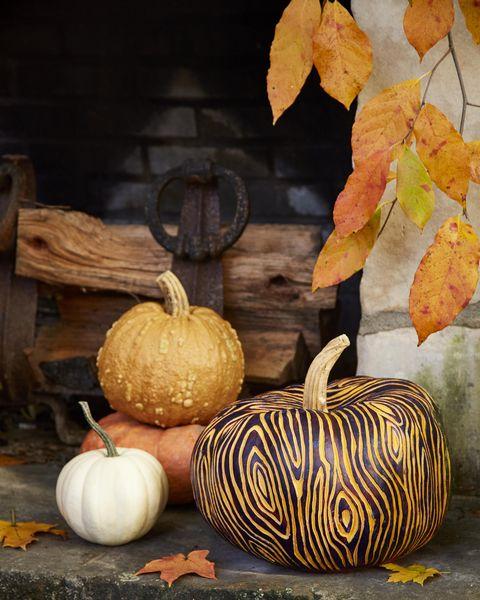 painted faux bois pumpkin easy painted pumpkins