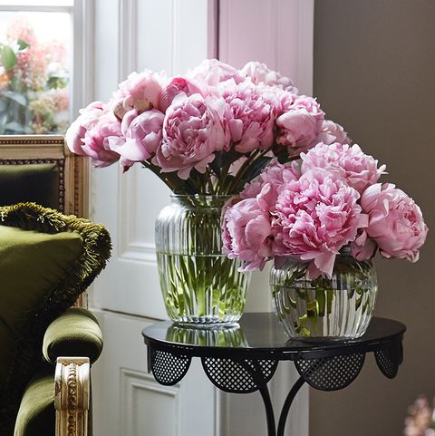 Flower, Pink, Room, Plant, Interior design, Cut flowers, Living room, Furniture, Hydrangea, Home,