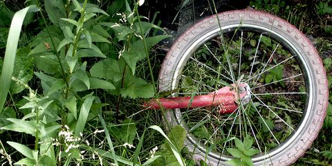 mountain bike wheel and weeds