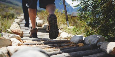 Feet of male hiker hiking along log footpath