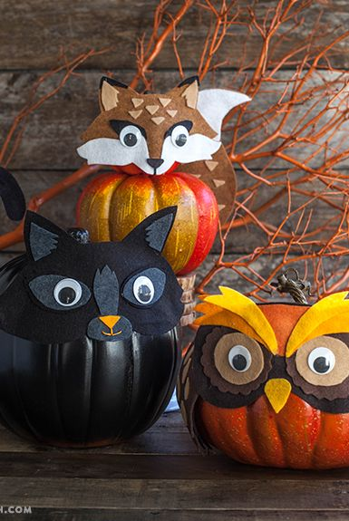 felt animal pumpkin decorating