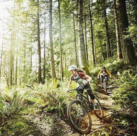 Female friends riding mountain bikes down trail in wood