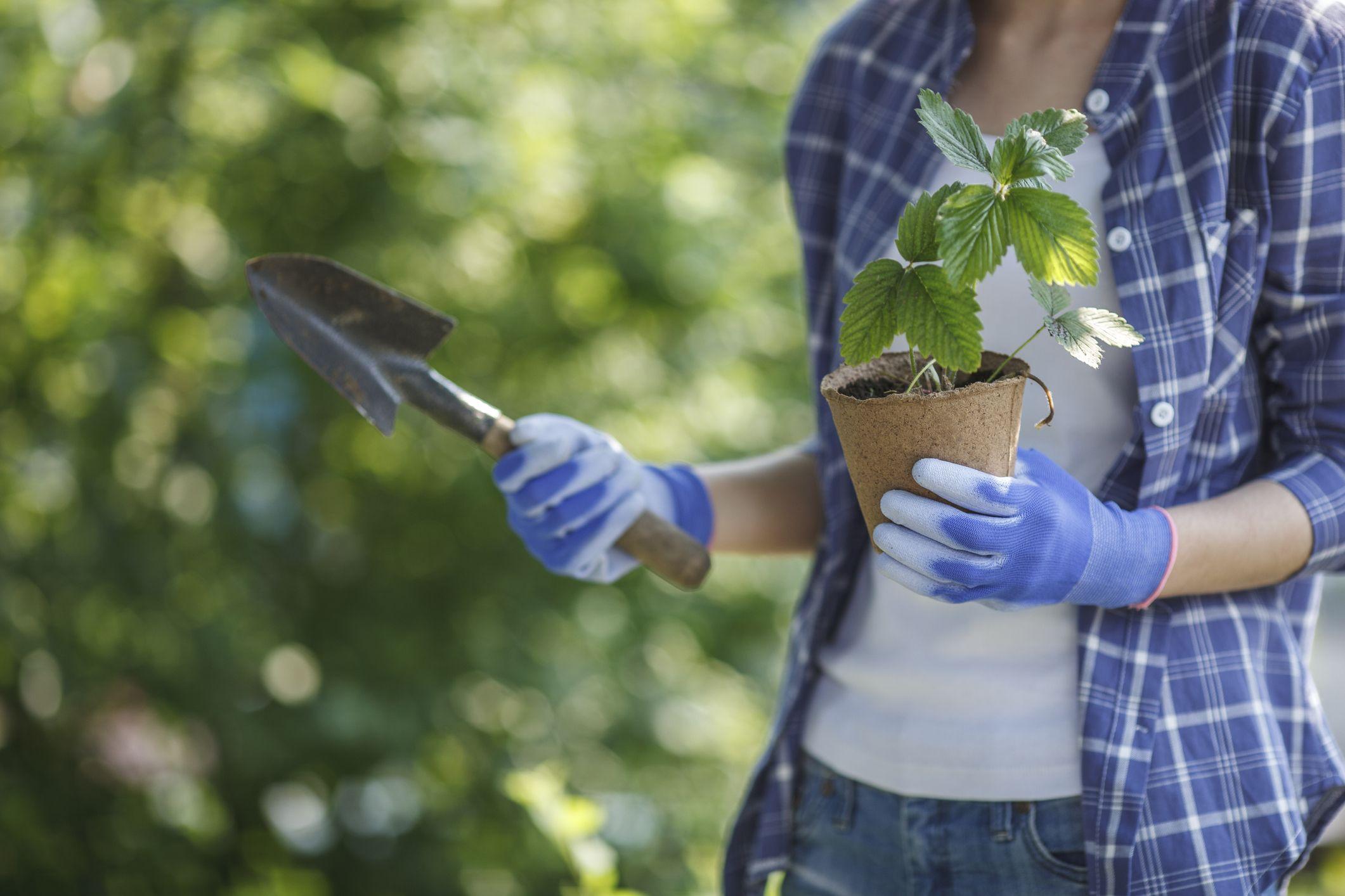 The 14 Best Gardening Gloves, Hands Down