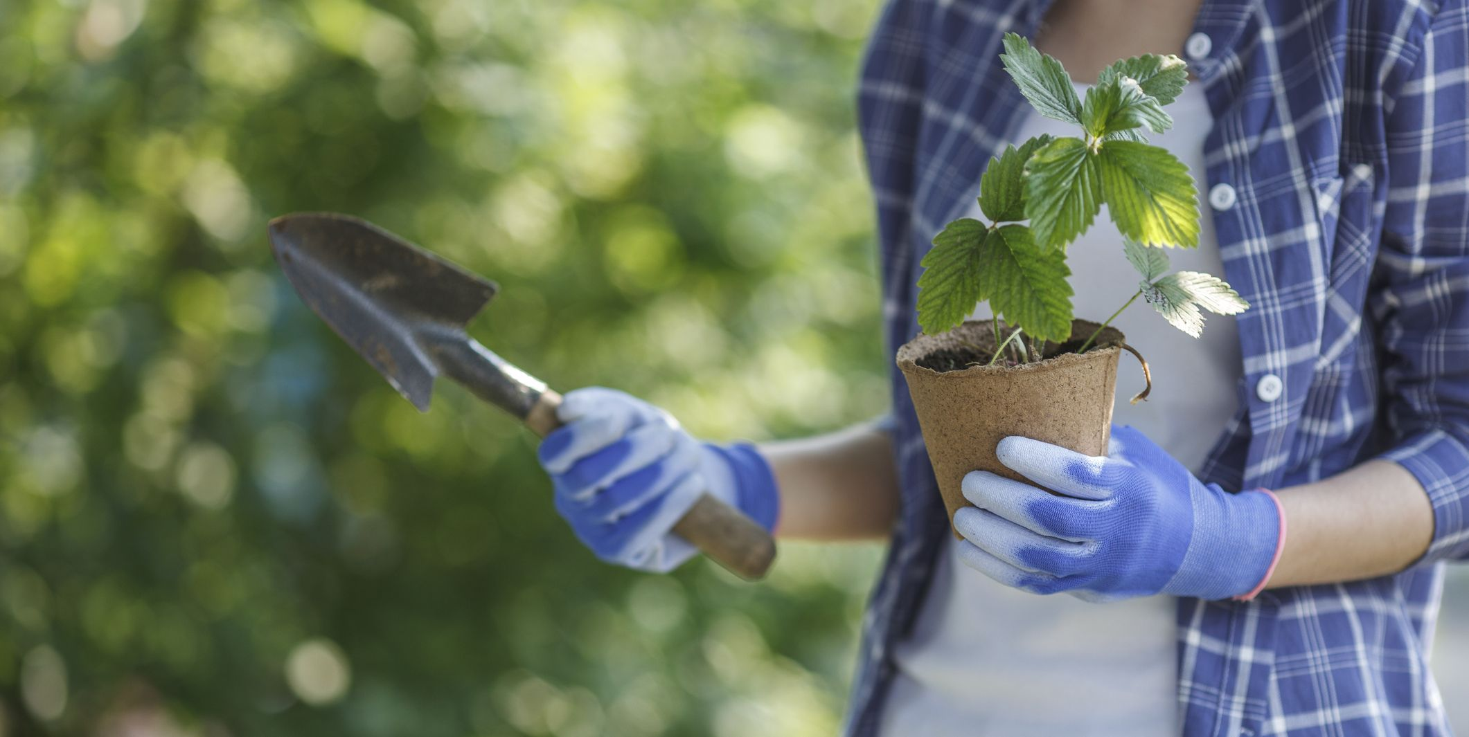 These Are the Best Gardening Gloves Out There, Hands Down