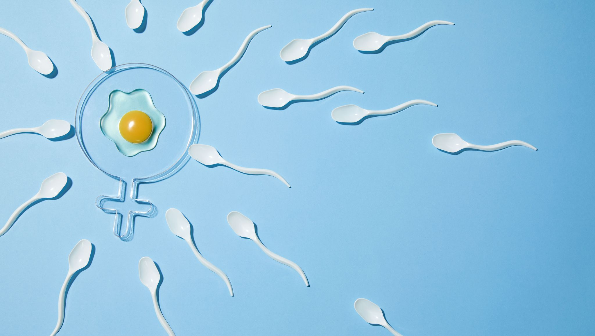 Inside the Male Fertility Crisis