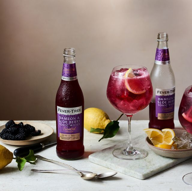 fever tree damson and sloe berry tonic