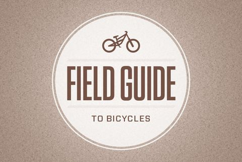 Field Guide to Bicycles