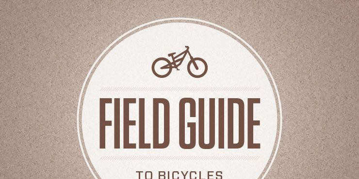 A Field Guide to Bicycles