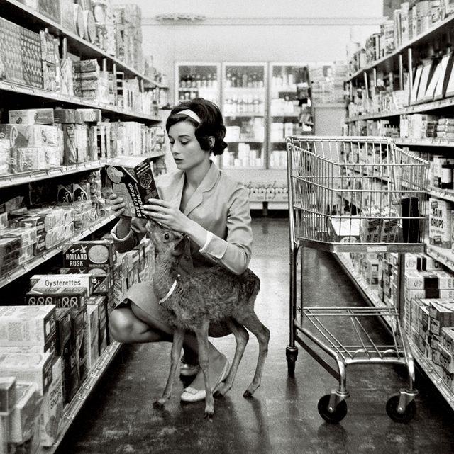 最初の夫、メル・ファーラーが監 督した『緑の館』で共演した仔鹿 のピピンとビバリーヒルズのスー パーマーケットにて、1958年。