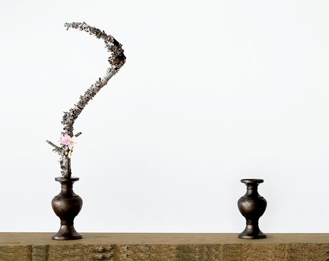 Sculpture, Still life photography, Metal, Tree, Branch, Art, Wood, Bronze, Table, Plant,