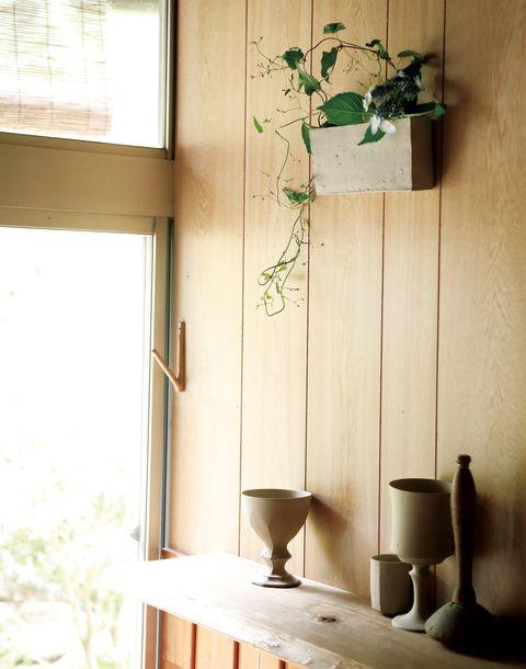 室内のそこここに、花がある森本さんの暮らし。工房の壁にも白い花器に山野草の彩りが。棚にはお気に入りの作品を並べて。